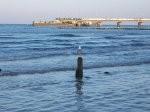 Zamierzasz spędzić urlop nad Bałtykiem? Już teraz myśl o dogodnych pokojach